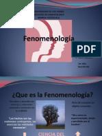 FENOMENOLOGIAA