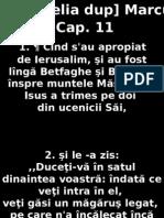 Marcu_11