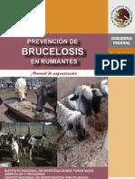 Manual Brucelosis