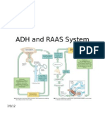 ADH and RAAS System