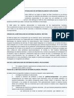 METODOLOGIA DE SISTEMAS BLANDOS