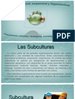 Subculturas Organizacionales