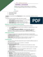 DUT GEA - M411 Systèmes économiques - CHAP 1 - Fiscalité