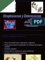 Clase de Estrepto y Enterococos