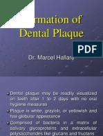 6 Formation of Dental Plaque