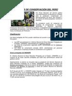 UNIDADES DE CONSERVACIÓN DEL PERÚ