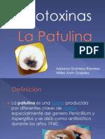 Expo - La Patulina (2)
