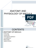 New Anatomy and Physiology of Macula.pptx