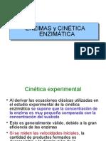 Cinetica.enzimatica