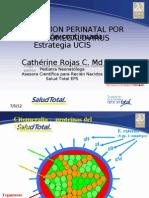 Citomegalovirus Infeccion Perinatal 2012