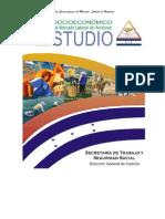 Estudio Socio Económico 2008-2009