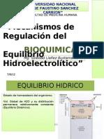 EQUILIBRIO HIDRICO DIAPOS