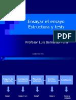 Escribir El Ensayo I - Estructura y Tesis