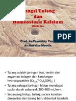 Fisiologi Tulang (DMS-K6)