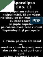 Apoca_13