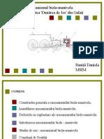 PPT BANITA Daniela Mecanisme