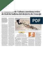 Fosil de ballena en Peru