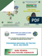 2003. IICA. Guía Técnica del Cultivo de Aguacate