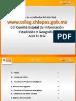 Reporte Sitio Web CEIEG Junio