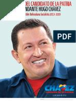 Programa Patria 2013 2019