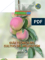 2004. IICA. Guía Técnica del Cultivo de Melocotón