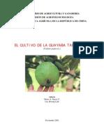 2001. MAG. Guía Técnica del Cultivo de Guayaba Taiwanesa