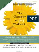 The Chemistry of Joy Workbook
