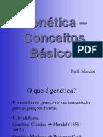 genetica conceitos  basicos 3º ano