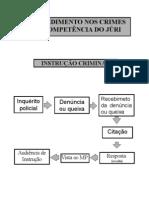Fluxogramas Processo Penal