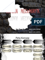 PPT Metamorf