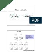 ch16_polysaccharide