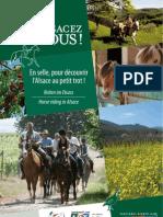 Tourisme Equestre Alsace