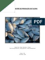 Modelo Emater ProdUCAO DE  Tilapia