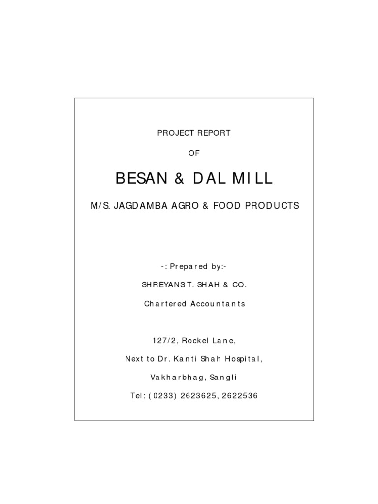 Besan Mill Project | Loans | Expense
