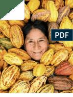 Cacao organico de Peru