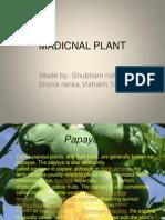 Madicnal Plant