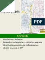 Chp 6 Metabolism
