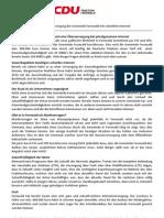 CDU Fernwald Standpunkte Internet