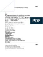 Informe Final E-Commerce