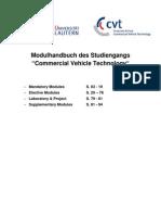 Modulhandbuch_22_04_2010
