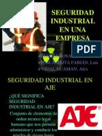 Seguridad Industrial en Una Empresa