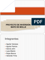 Proyecto Molle Final
