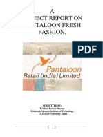 36759537 Pantaloon Project