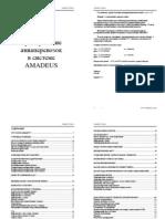 Amadeus Basic Course 2011(A5) (1)