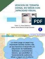 INTERVENCION DE TERAPIA OCUPACIONAL EN NIÑOS CON DISCAPACIDAD VISUAL