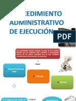 procedimientoadministrativodeejecucion