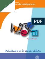 Nivel 1. Documento de Trabajo WISC3