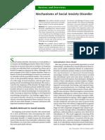 Neurobiological Mechanisms of Social Anxiety Disorder