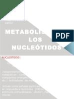 Mertabolismo de Nucleotidos I