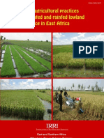 Good agricultural practices for irrigated and rainfed lowland rice in East Africa